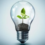 Environmental Standards and considerations