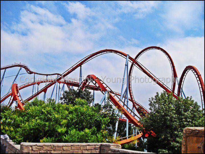 Fine, theme park, roller coaster